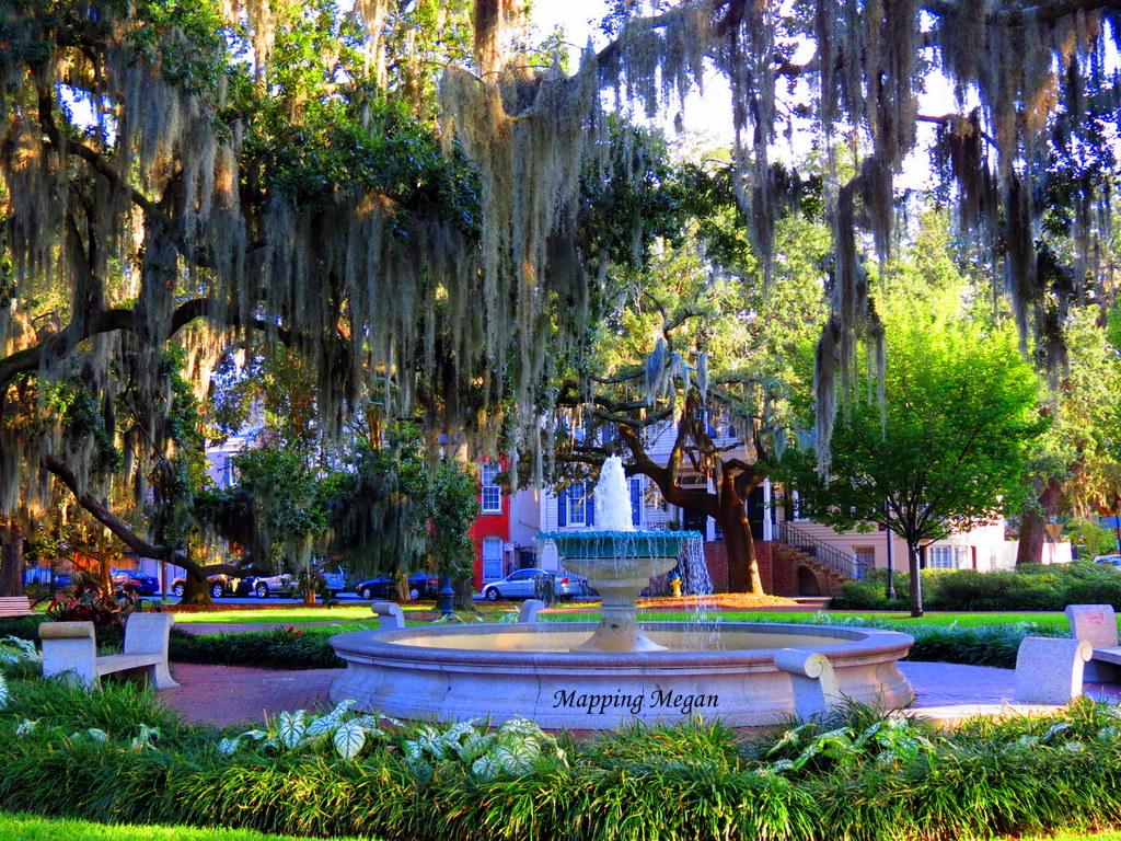 Savannah.