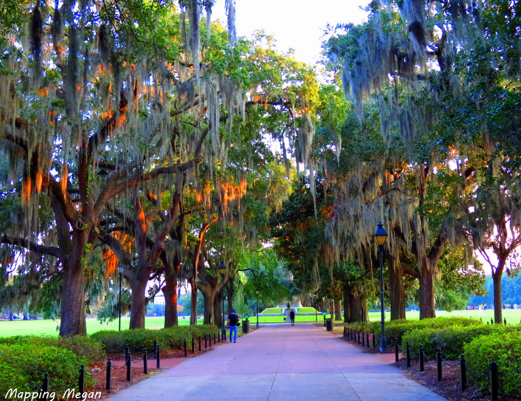 Savannah Forsyth Square