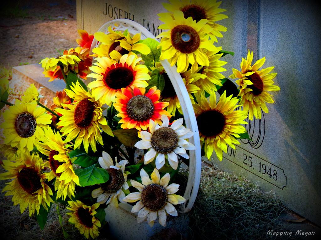 Bonaventure Cemetery.