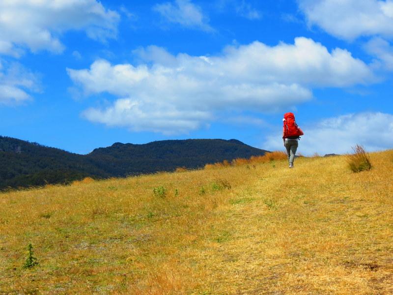 Hiking Australia's Maria Island.