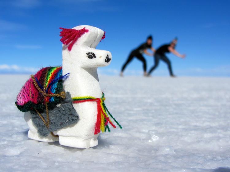 The salt Llama.