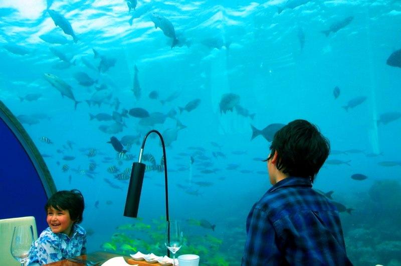 Ithaa Undersea Restaurant, Maldives.