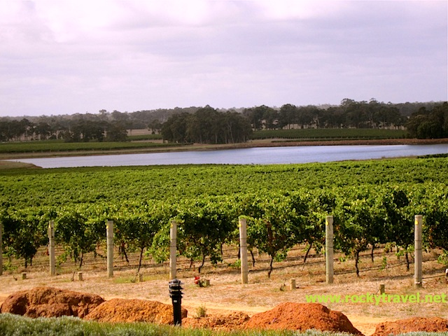 Margaret-River-Wineries