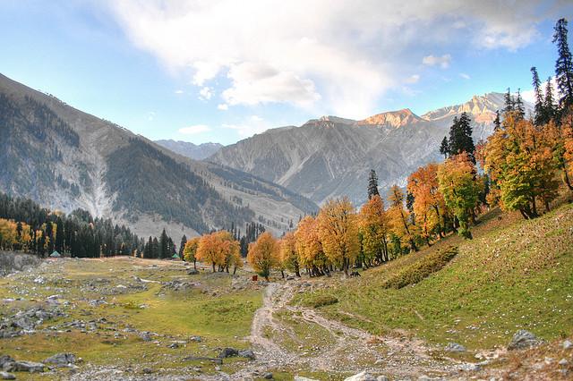 Autumn in Kashmir. Photo CC by