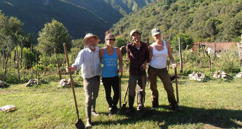 agricultural-volunteers