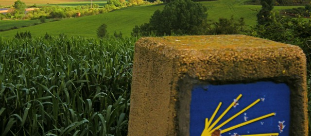 Can a Movie Motivate You to Walk 500 Miles? Film Review: Walking the Camino. Six Ways to Santiago