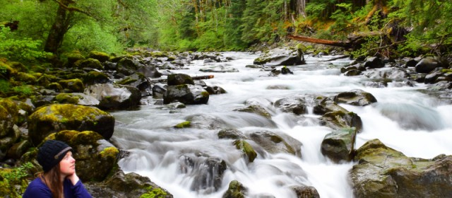 Your Complete Guide to an Unplugged Vacation in Olympic National Park
