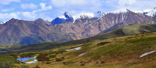 Snapshot From the Road: Denali National Park
