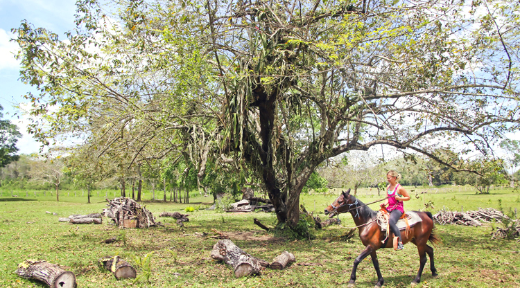 Much of Belize was once only accessible by horse, so for those seeking an authentic and traditional adventure, a horseback riding tour is the way to go.