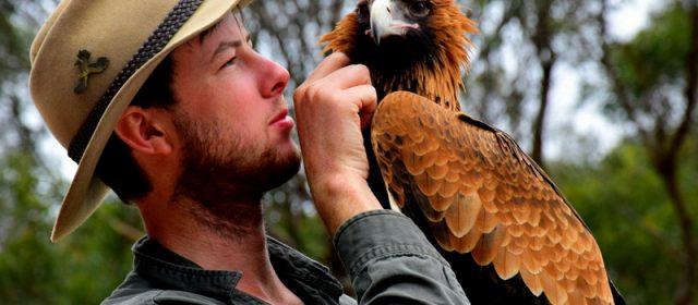 How We Got Up Close With Australia's Birds of Prey