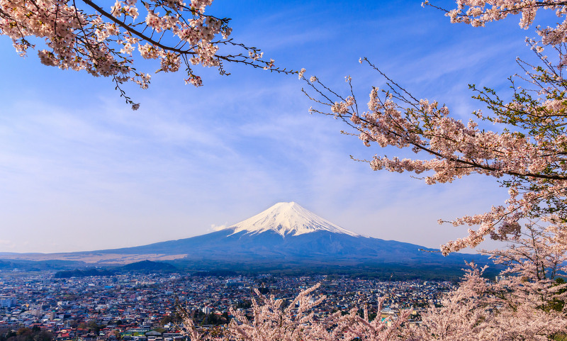 How To Plan A Cherry Blossoms Trip To Japan Mapping Megan