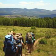 I Walked the Camino, but NOT in Spain: Guide to the French Via Podiensis Pilgrimage Route