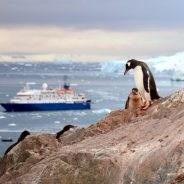 The Trip of a Lifetime: Traveling to Antarctica on an Expedition Cruise