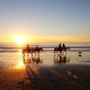 Want to Do More than Swim? Visit these Unexpected Aussie Beaches!