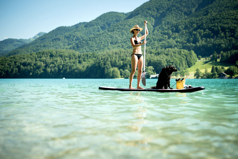 Paddleboarding with a dog