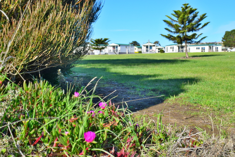 Discovery Parks Devonport Hotel Review – Tasmania Accommodation