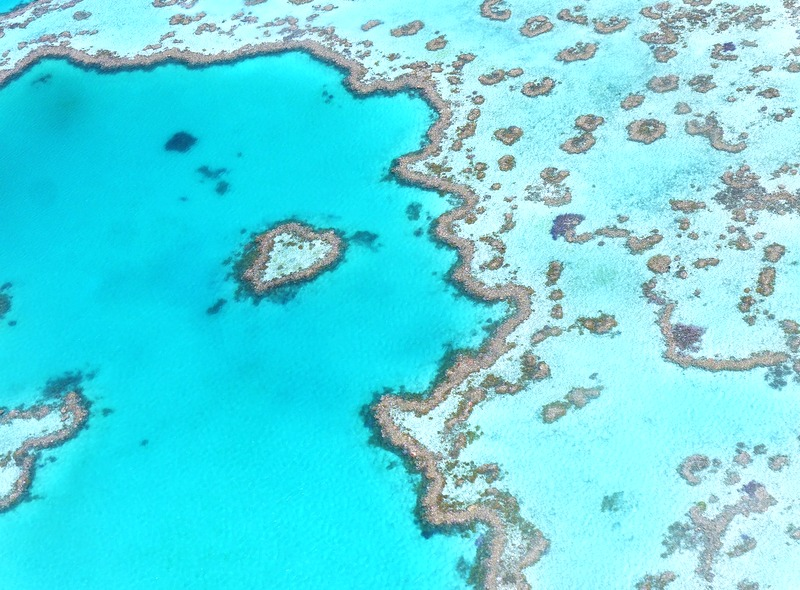 5 Reasons to Visit the Whitsundays