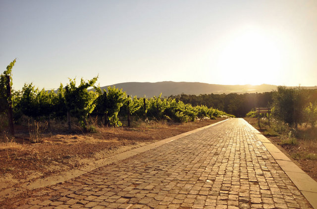Located approximately 45 minutes from Cape Town, this elegant winery features mountain ranges and panoramic views.
