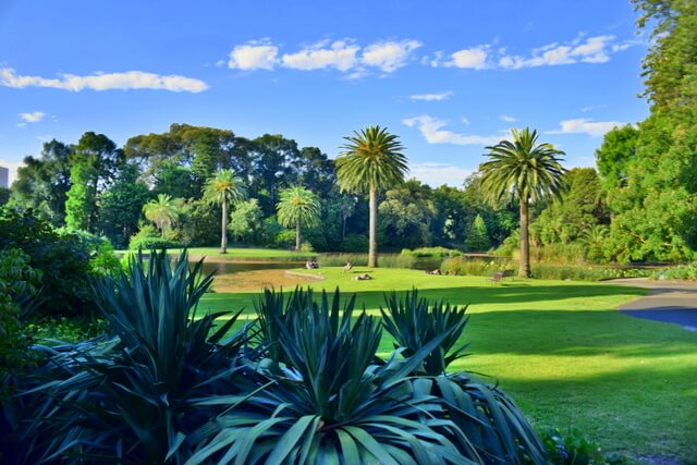 The Royal Botanic Gardens is one of Melbourne's most visited attractions