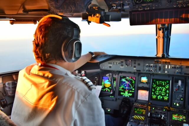 Pilot airline flight