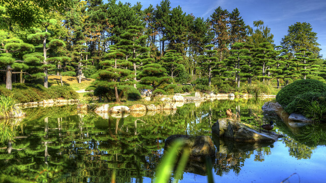 Japanese Garden Dusseldorf
