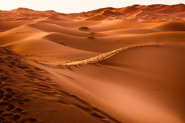 Desert RF