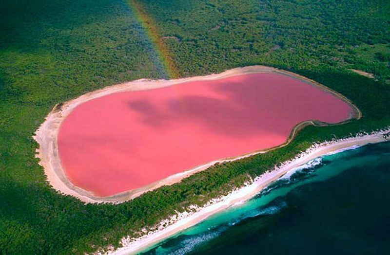 Pink Lake Hillier South Australia