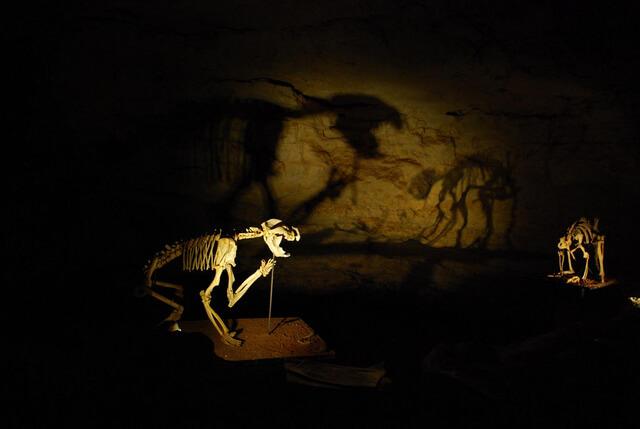 Victoria Fossil Cave