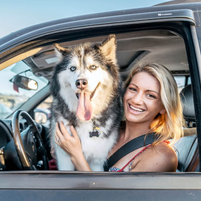Five Expert Tips For Teaching Fido To Travel in a Car