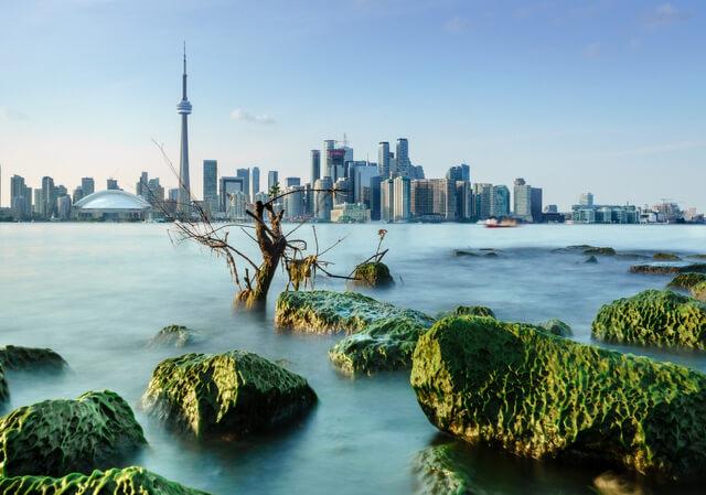 Toronto Skyline RF